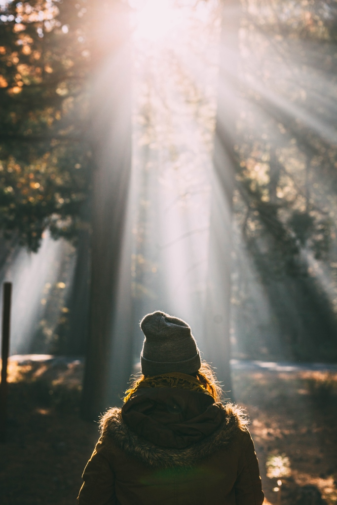 woman walking in forest with sunshine overhead