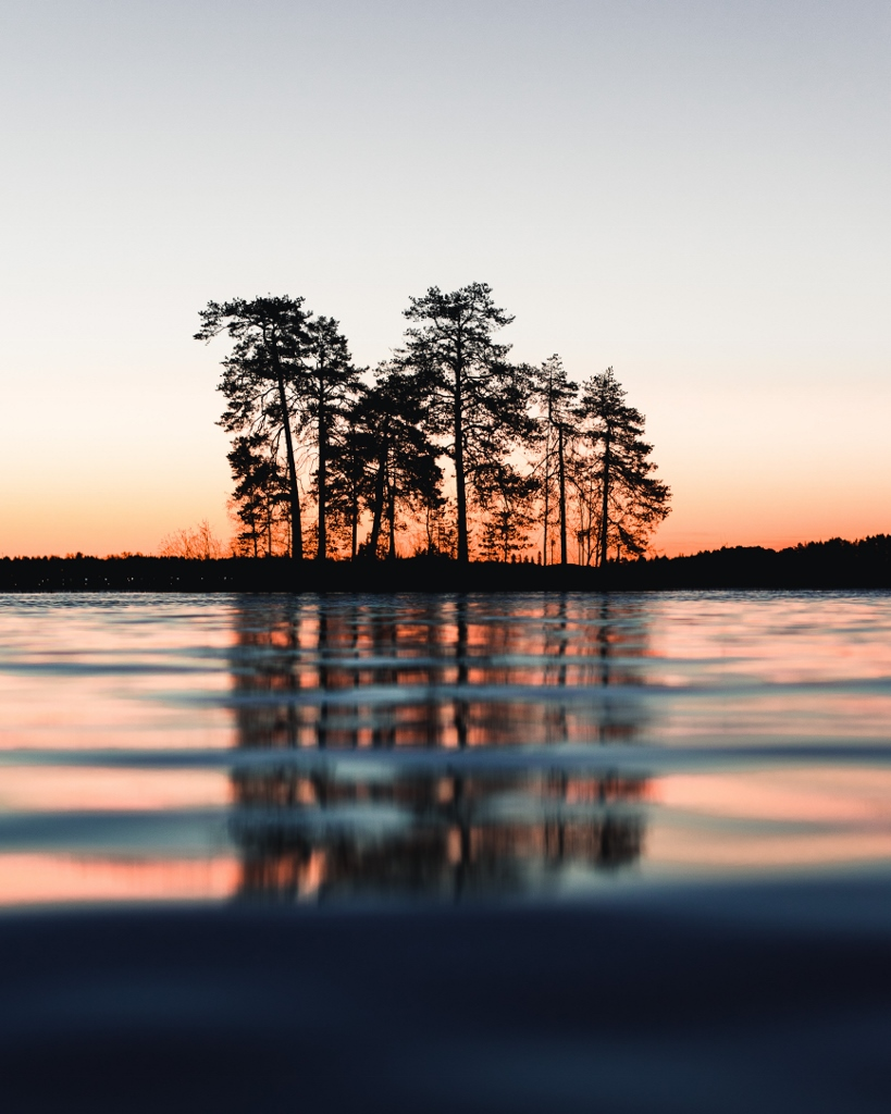 trees reflected on water at sunset